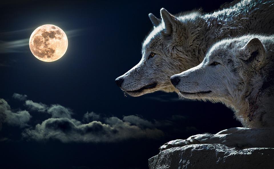 Full Moon Meditation Video
